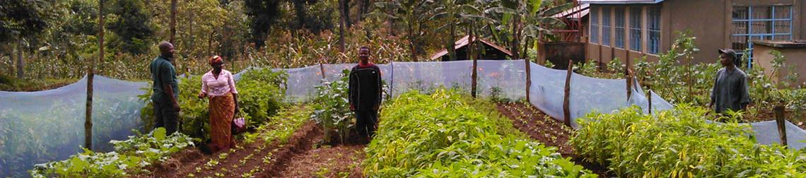Mkyashi garden  1140 x 252