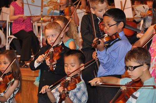 violin group 330
