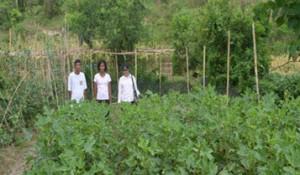 Flora Fam crop