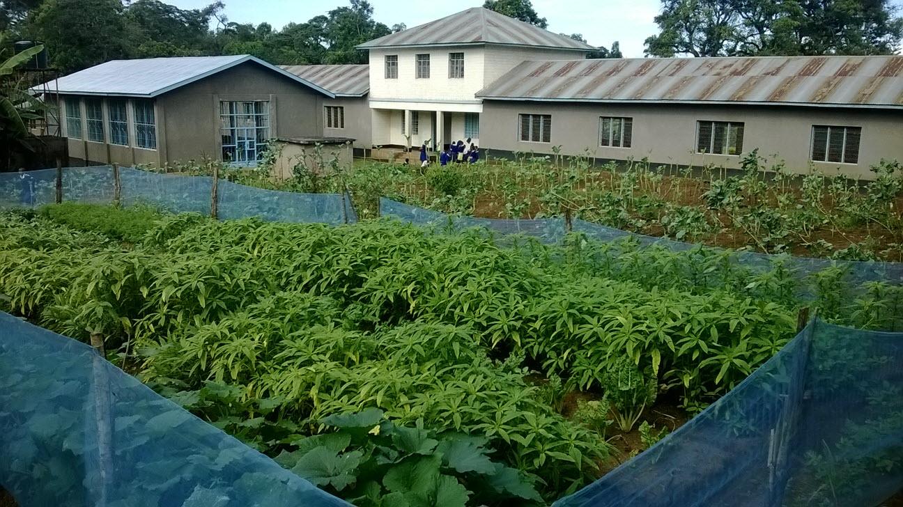 Better Lives | Helping Children Kilimanjaro, TZ - School plans to ...
