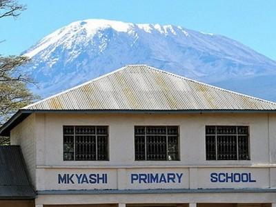 mkyashi primary