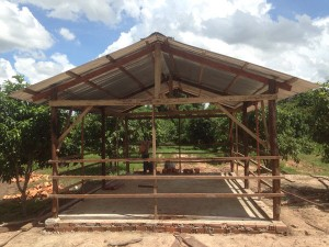 Cow shed Siem Reap Cambodia