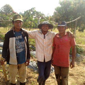 Wen and the farm workers during the mentori g