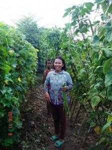 Mrs. PYP in her garden