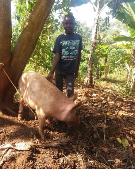 Wamukisa - ABCD - SOS Family - boy with pig