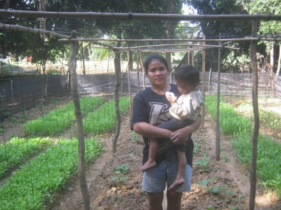pisey garden (4