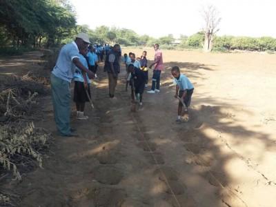 Maendeleo - students learning to plant beans