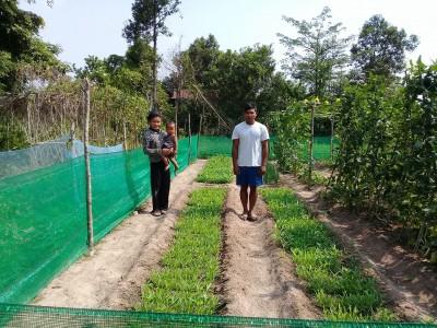YS garden