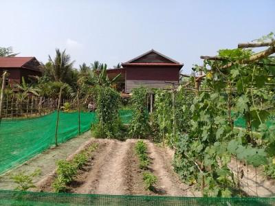 YS house